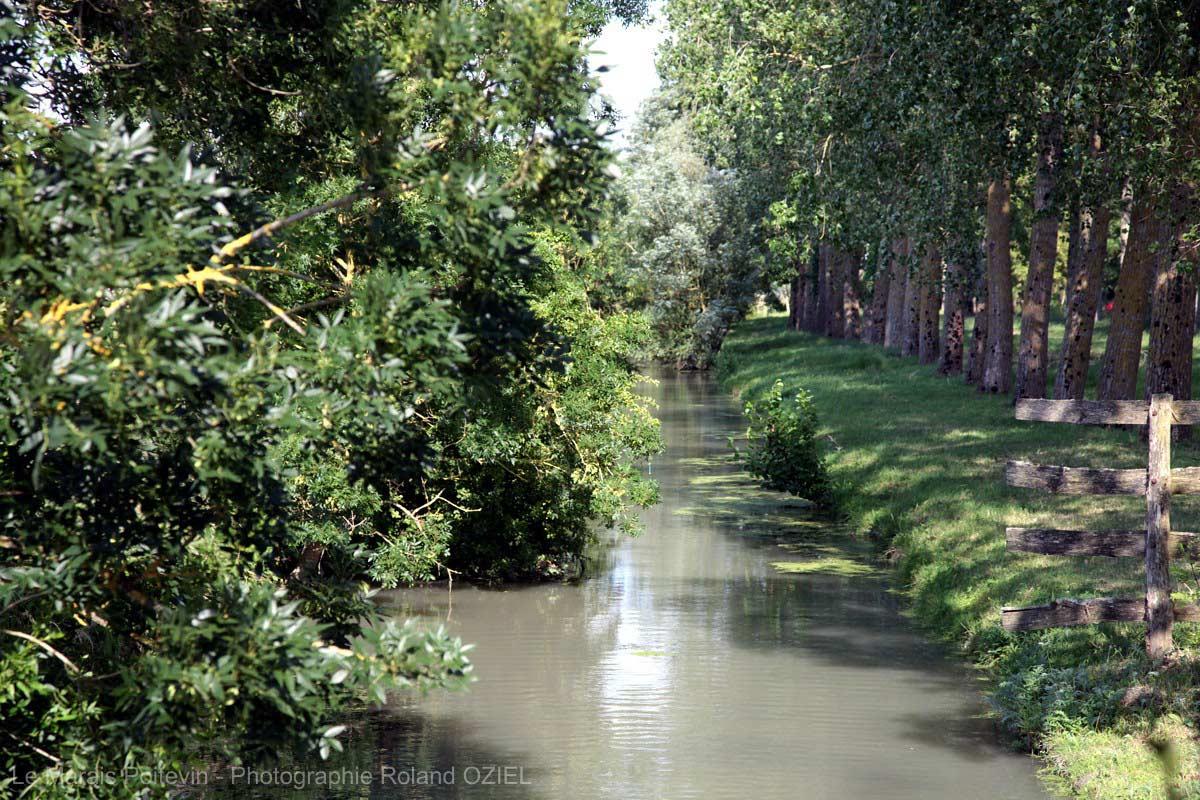 Marais Poitevin