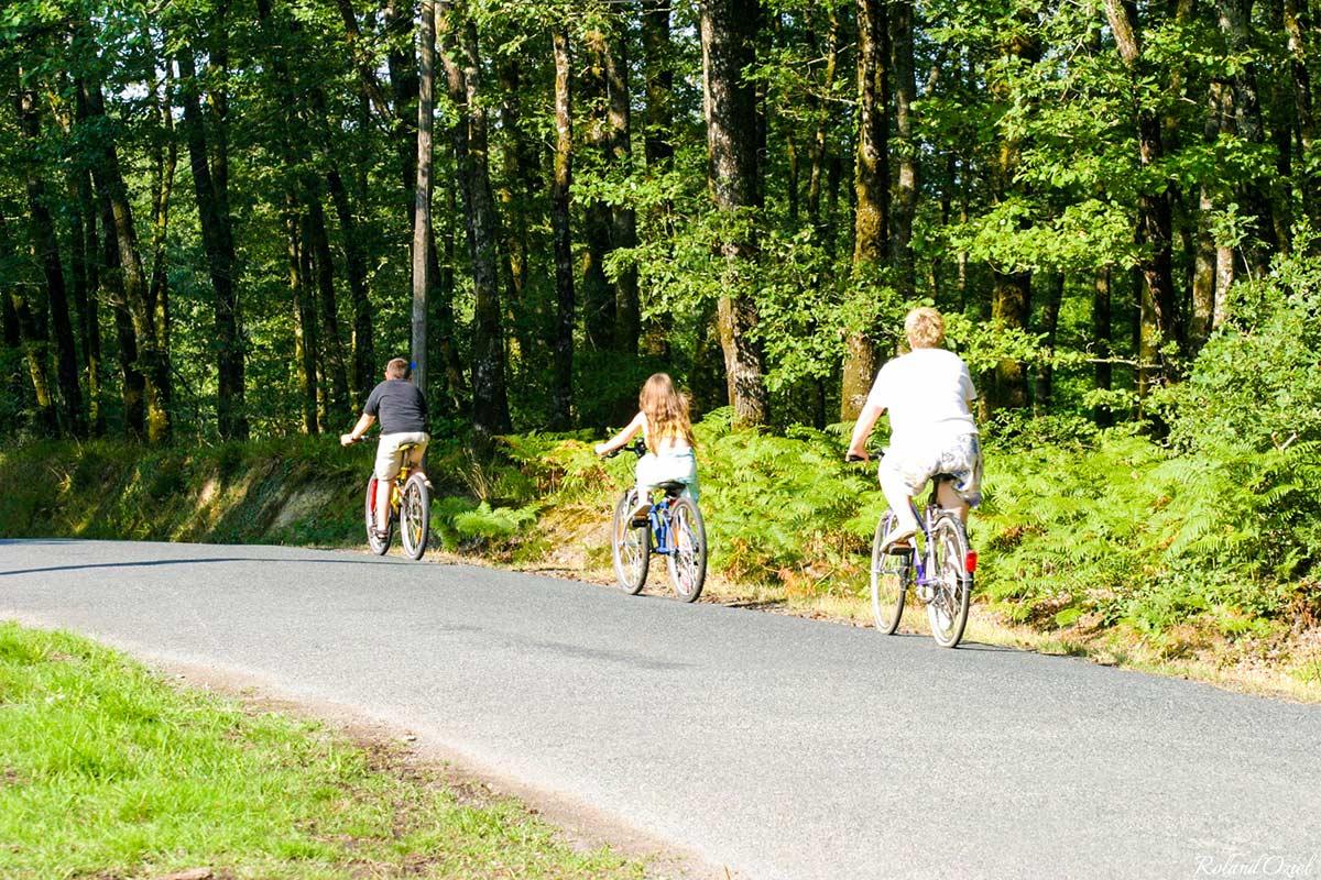 Randonnées et pistes cyclables de Mervent 1