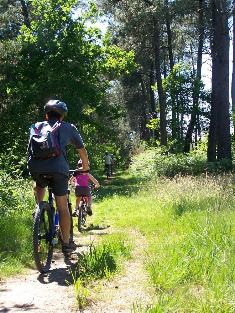 Activités sportives - randonnées vélo