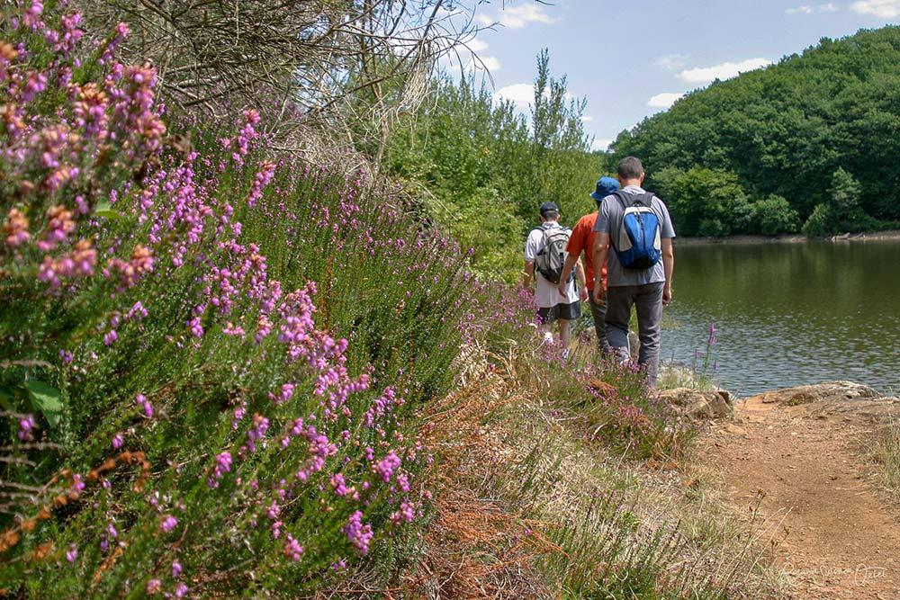 Sport et nature Vendée - randonnées